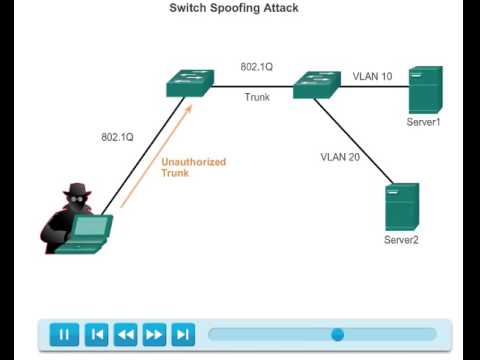 Switch Spoofing Attack 3 3 1 1