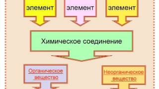 Самкова Биология  урок 3 Химический состав клетки