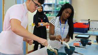 Reach for Excellence Summer School 2018