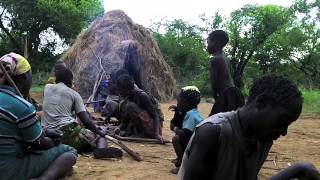 Hadza Tuber Digging and Honey