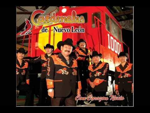 Los Cardenales De Nuevo Leon - Mi Nuevo Amor