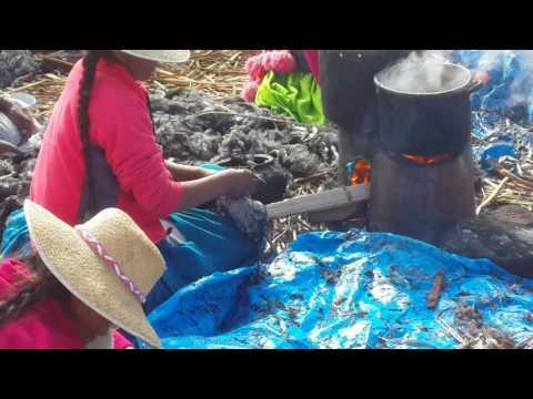 cooking chicken on Titicaca lake, Peru