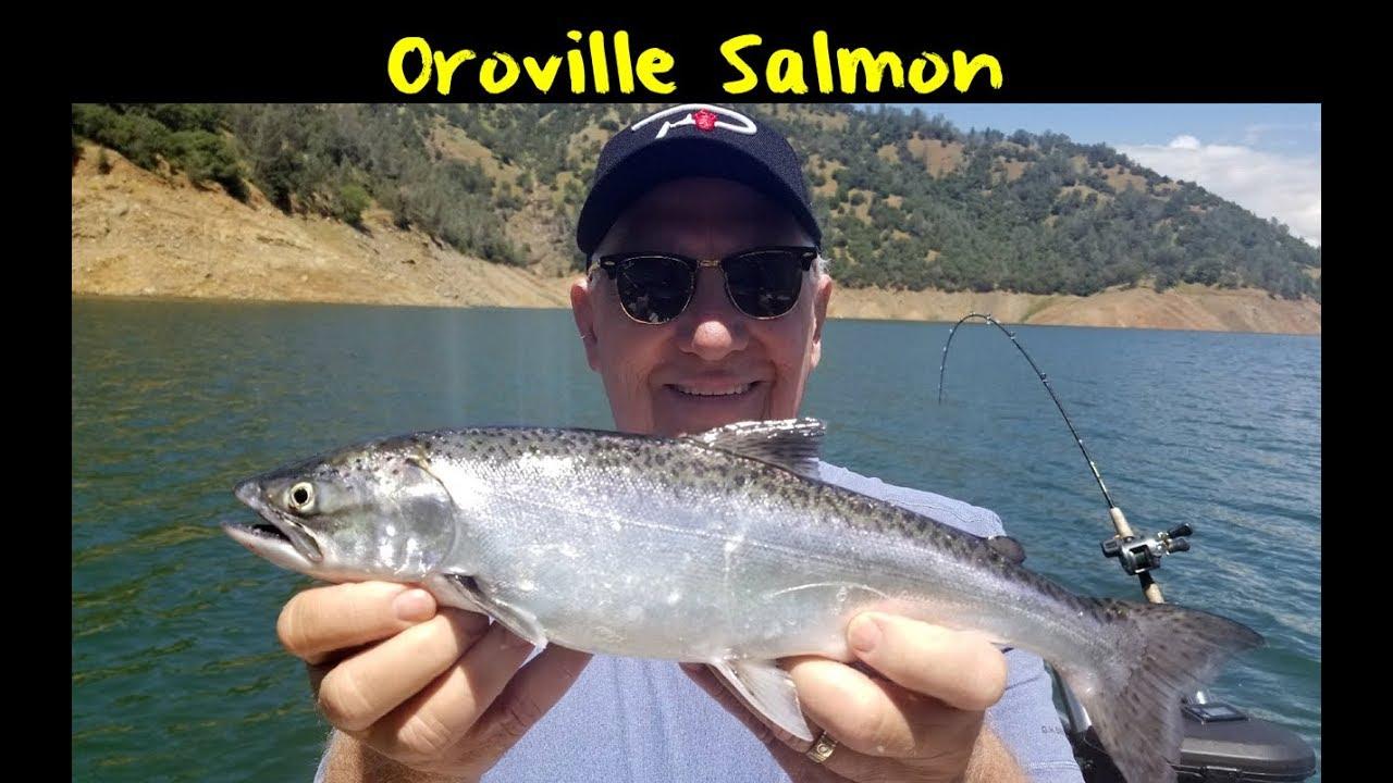 Lake Oroville Salmon Fishing