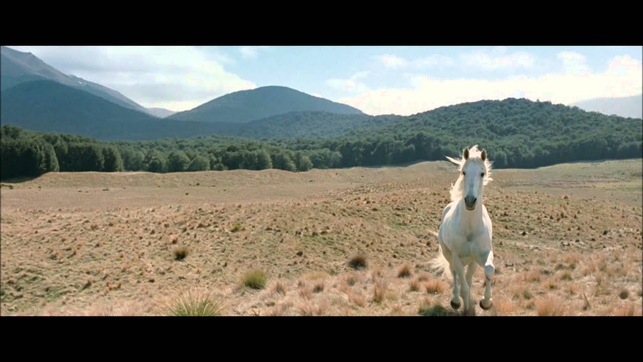 The Lord Of The Rings Shadowfax