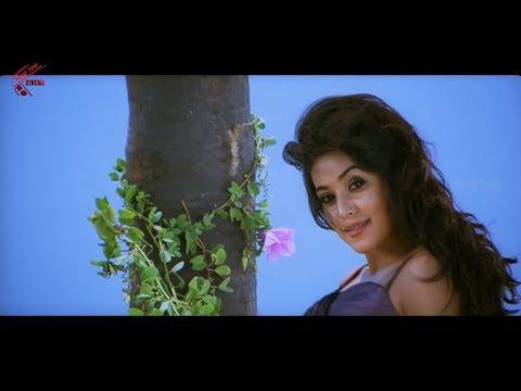 Dheere Dheere Dille Video Song || Seema Tapakai || Allari Naresh, Poorna