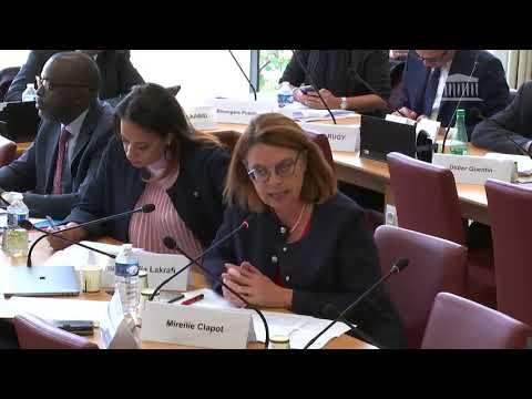 Commission des affaires étrangères : M. Gilles Roussel