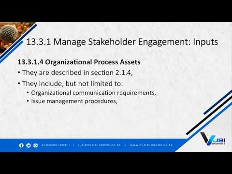 13.3 Manage Stakeholder Engagement