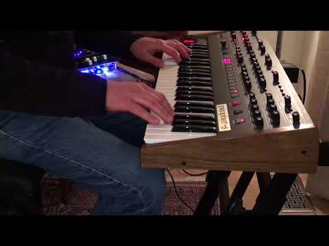 Prophet 6 Synthesizer - Hammond Organ Patch - Dave Smith Instruments Sequential