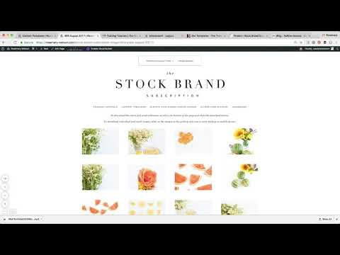 A Tour of the New Stock Brand Subscription Library Site