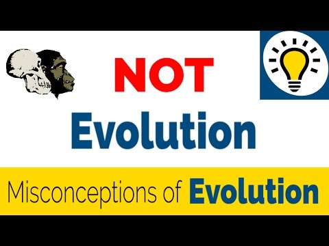 Confusing Evolution with Abiogenesis and The Big Bang Theory - Common Misconceptions of Evolution