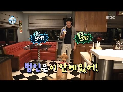 I Live Alone 나 혼자 산다 Ice cream suspect is mango..? 20161223