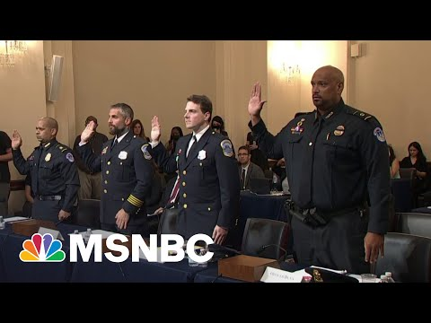 'Hitman' Trump: DC Officer Suggests Trump Started MAGA Riot As Probe Kicks Off