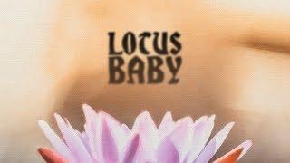 lotus baby // pandi x khoa x jtbs // hip-hop