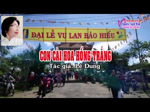 Karaoke vọng cổ CON CÀI HOA HỒNG TRẮNG - Dây đào [T/g Lê Dung]