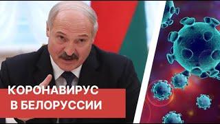 Коронавирус в Белоруссии Лукашенко заявил о двукратном снижении числа пневмоний