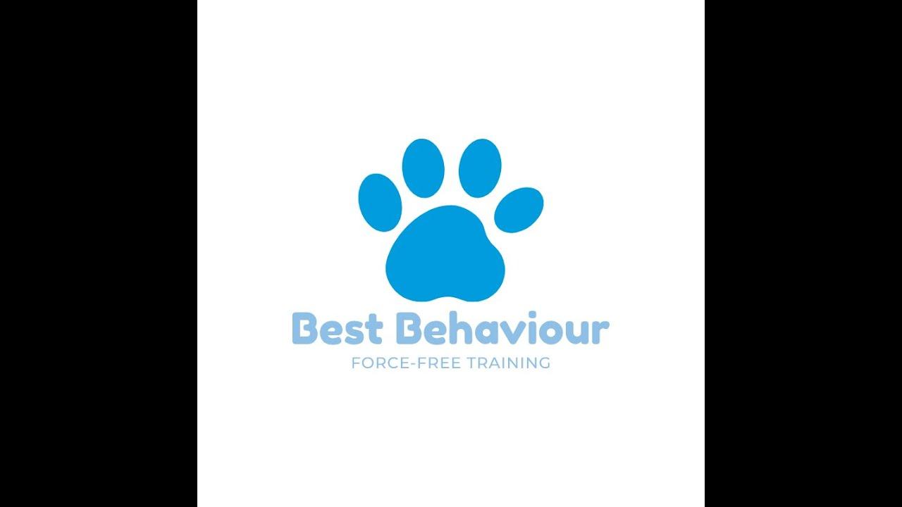 Owner Orientation for Polite Puppy Preschool