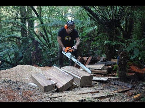 blackwood - timber for guitars