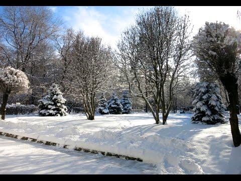 Kazakhstan: First Winter in Almaty (Первая зима в Алматы) 2015