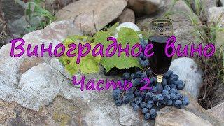 Виноградное вино. Часть 2. Технология брожения.