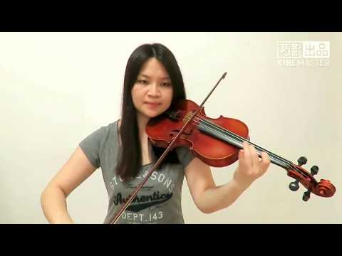 Zedd - Daisy ft. Julia Michaels(Violin Cover)