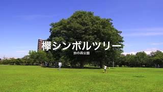 松阪えェなぁ〜 鈴の森公園(カネボウ綿糸工場跡地)