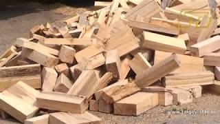 Търсене на дърва за огрев в Търговище