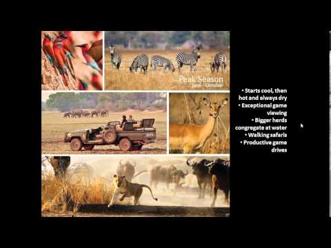 Webinar: Norman Carr Safaris, South Luangwa National Park, Zambia