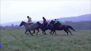 Gonitwa koni - finał. Hubertus w Lipowcu 2015