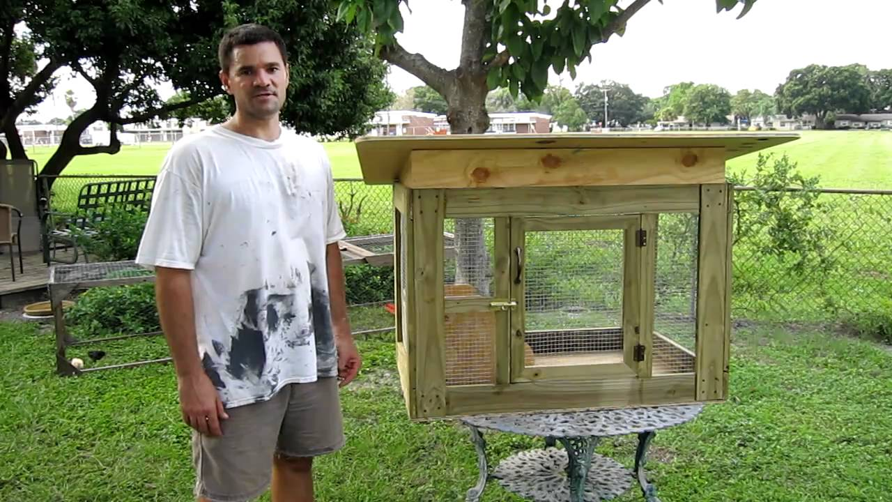 Small chicken coop youtube for Small chicken house plans