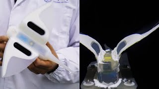 Self-powered Soft Robot In The Mariana Trench