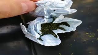 Задержание наркоманов в Кишиневе