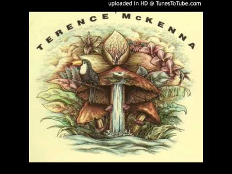 Terence McKenna - This is the Mushroom's Program - The Psychedelic Salon #484