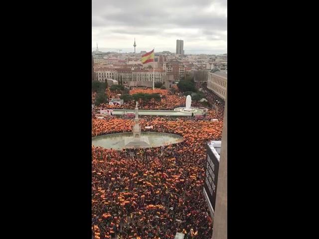 A baloldali kormány ellen tüntettek Spanyolországban 2019.02.10. | Vadhajtasok.hu