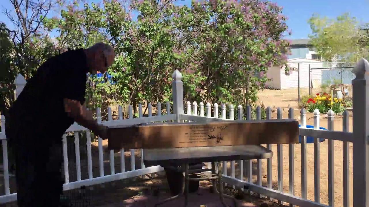 Abba Patio 7 1 2 Ft Round Outdoor Market Patio Umbrella Ap75386ctg