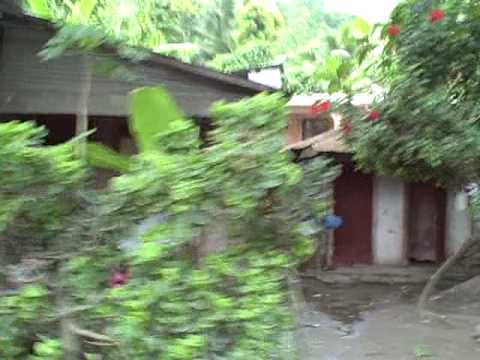 Cam Coq, Haiti