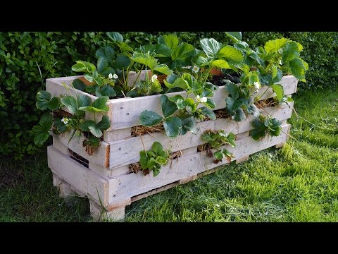 how to make a better strawberry pallet planter youtube. Black Bedroom Furniture Sets. Home Design Ideas