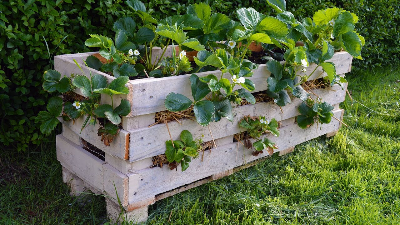 how to build a strawberry pyramid planter