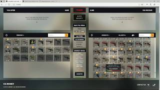 Proof That CS.Money won't make you money!! You WIll Lose Money With This Method!