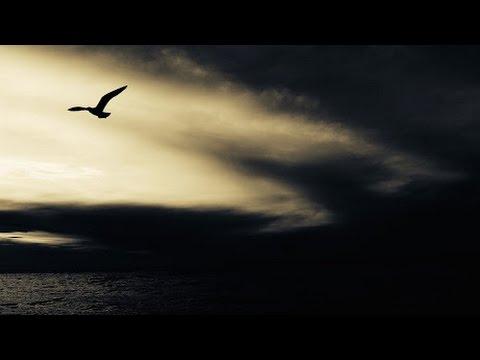 Terrifiante Nuit d'Horreur - Musique et Bruits d'Epouvante - 1 Heure