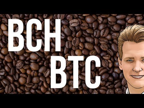 Bitcoin Cash is the new Bitcoin? Programmer explains.