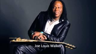 Joe Louis Walker - I Won