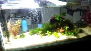 luminaria caseira para aquario super led 30w com fonte de impressora hp