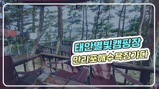 캠핑초보/태안별빛캠핑장/만리포해수욕장/물안개/서핑보기/…