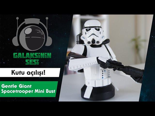 Kutu açılışı #4 - Diamond Select Toys Space Trooper Mini-Bust