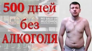 500 дней без алкоголя Жизнь без алкоголя Когда бросил пить