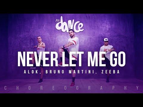 Never Let Me Go - Alok Bruno Martini Zeeba Choreography FitDance Life