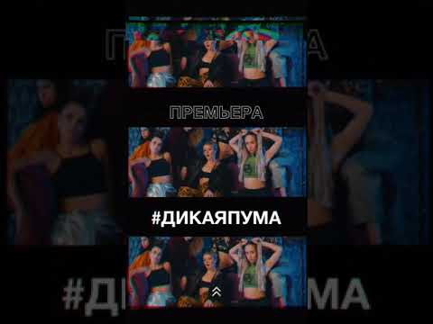 Юлианна Караулова -Дикая пума  премьера клипа