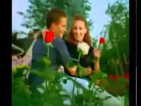 Скрапбукинг / Ажурная роза / Цветы из бумаги своими руками / openwork rose paper