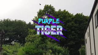 돈키1일1튜브(양산집 조경 소개)
