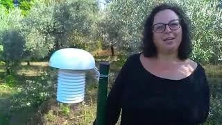 Elaisian On Tour : Costa di Sole - Pastena (S1E4) ITA